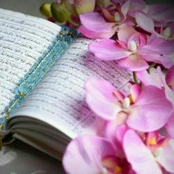 بیانات استاد حاج علی اکبری پیرامون سیره عملی امام رضا (ع)